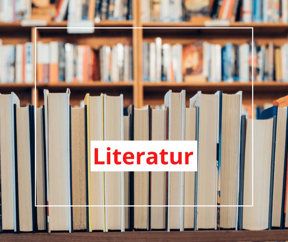 Wir blicken auf deutsch-türkische Bücher, Literatur und Sprache